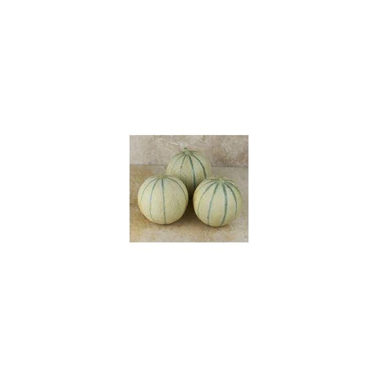 Melons & Pastèques