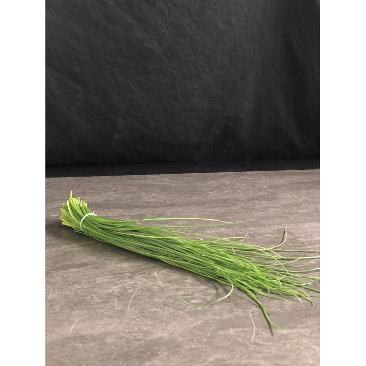 Ciboulette (Bouquet)