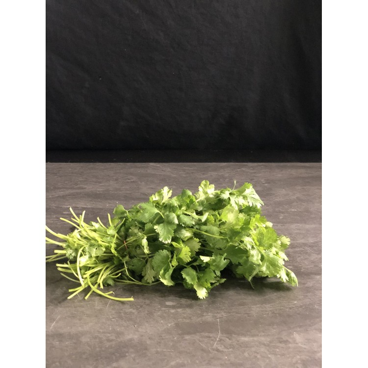 Coriandre (Bouquet)