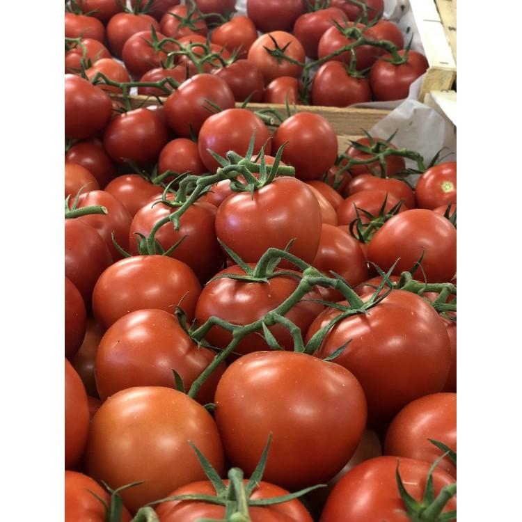Tomate Grappe de Provence (1kg)