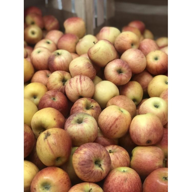 Pomme Pink Vrac (1kg)